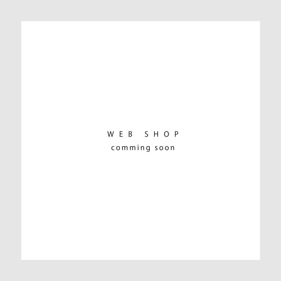 webshop2016.5.9-06
